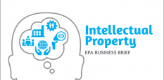 Thumnail image for Intellectual Property: EPA Business Brief