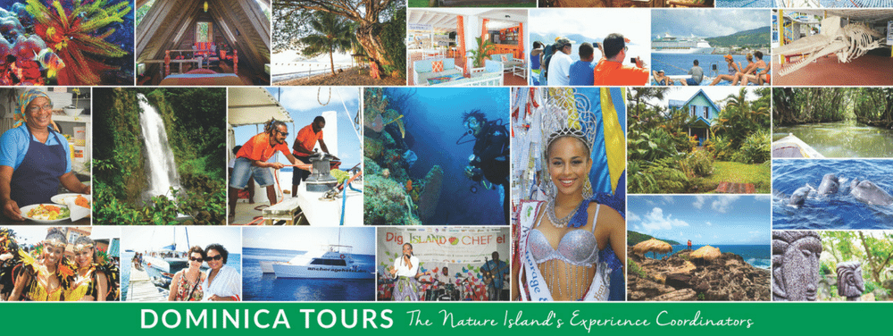dominica-tours-the-destination-management-marketing-division-of-anchorage-ltd-headline-image