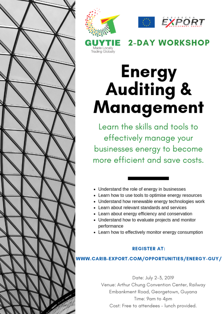 Thumnail image for Energy Auditing & Management Training – Guyana