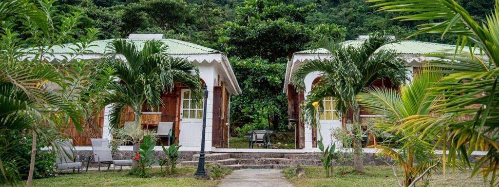 rodneys-wellness-retreat-from-battling-hurricane-maria-to-covid-19-headline-image