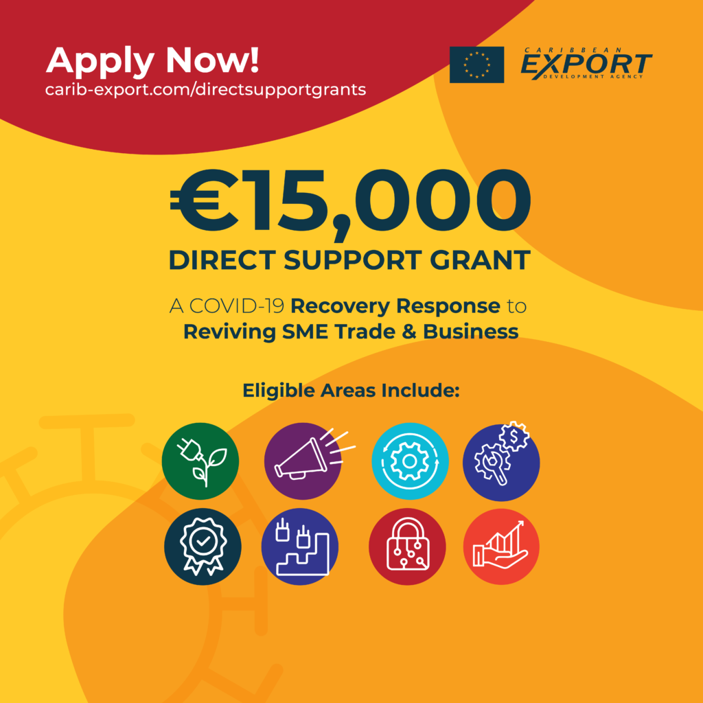 Thumnail image for Direct Support Grants Programme