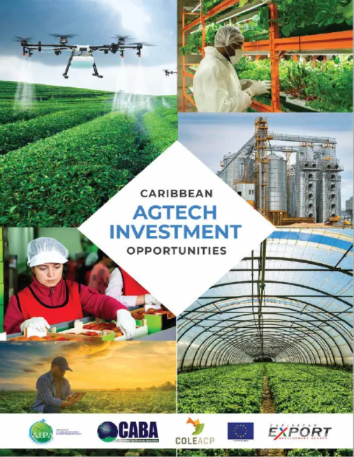 Thumnail image for Caribbean AgTech Investment Opportunities
